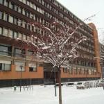 L'ingresso del Leone sotto la neve