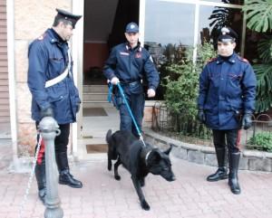 Perlustrazione dei Carabinieri con i cani antidroga