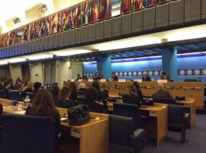 In assemblea presso la FAO