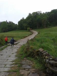 Cammino insieme