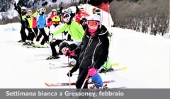 Gressoney- home page