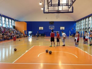 Clinic basket
